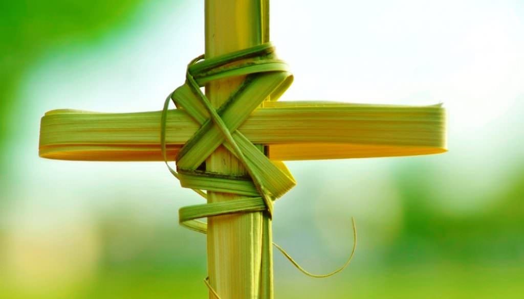 Suy niệm Lời Chúa: Chúa nhật lễ Lá