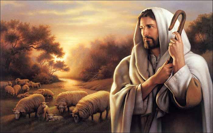 Suy niệm Lời Chúa: Lễ Thánh Tâm Chúa Giêsu
