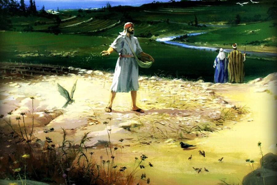 Suy niệm Lời Chúa:  Thứ Bảy tuần XXIV Thường Niên