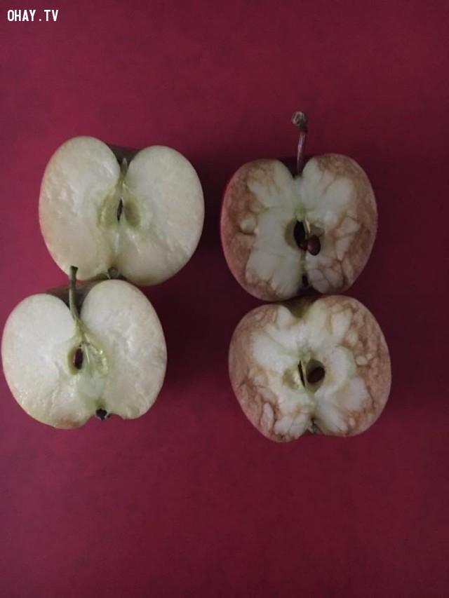 Bài học về sự tổn thương qua câu chuyện 2 quả táo.
